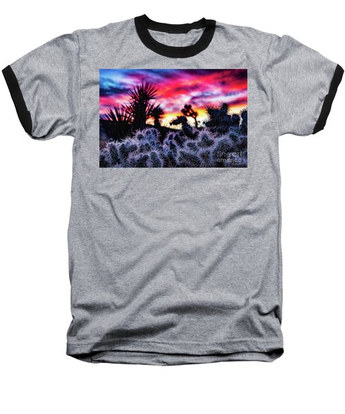 Teddy Bear Cholla Baseball T-Shirt