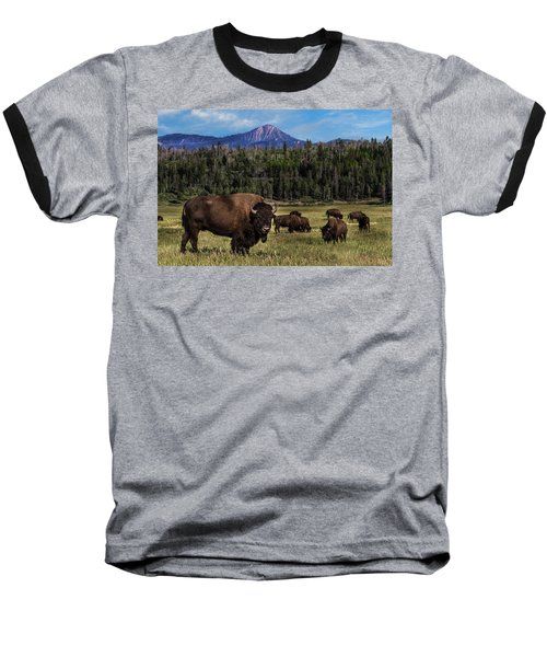 Tending The Herd Baseball T-Shirt