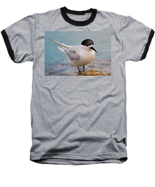 Baseball T-Shirt featuring the photograph Tern 1 by Werner Padarin