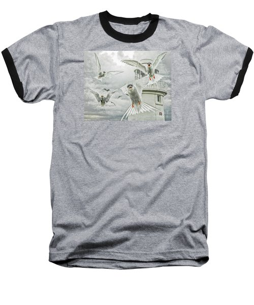 Tern Attack Baseball T-Shirt