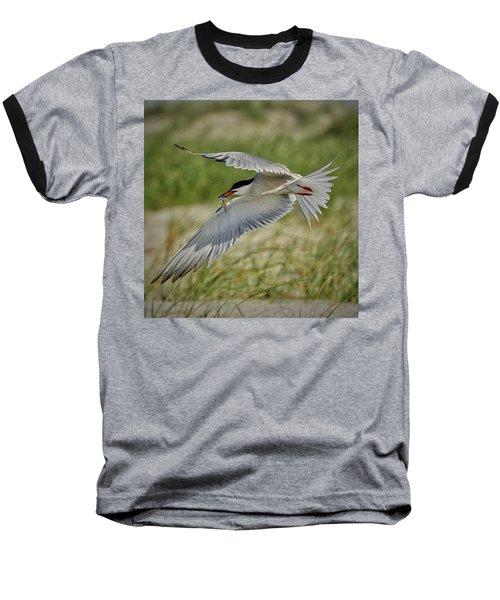 Tern Baseball T-Shirt