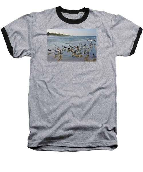 Baseball T-Shirt featuring the photograph Terns And Seagulls On The Beach In Naples, Fl by Robb Stan