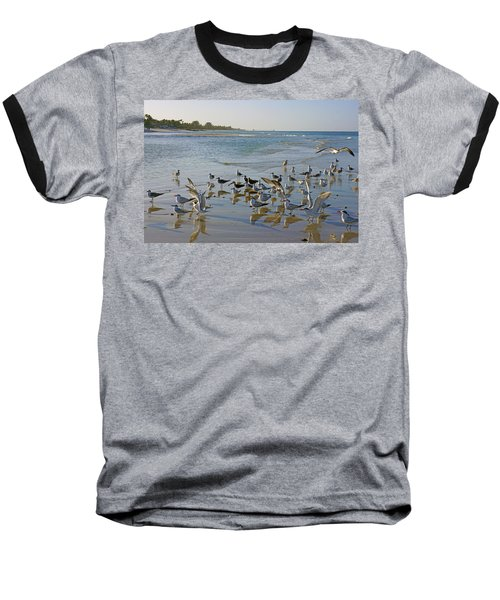 Terns And Seagulls On The Beach In Naples, Fl Baseball T-Shirt