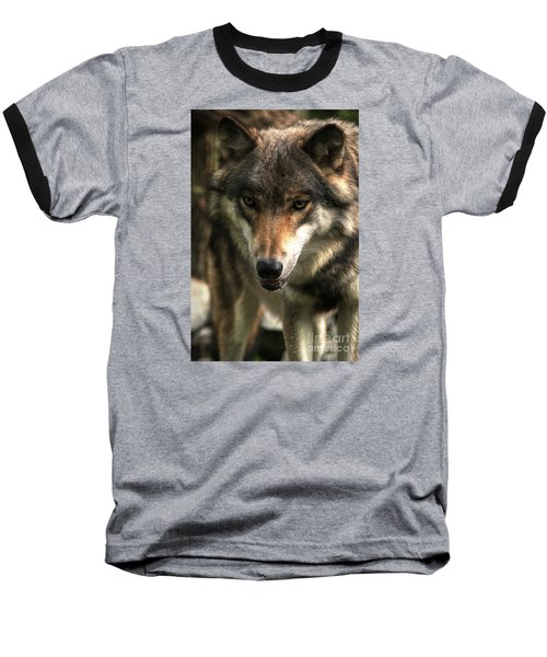 Teton Dribbling Baseball T-Shirt by William Fields