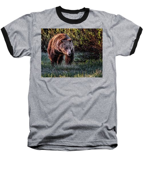 Teton Grizzly Baseball T-Shirt