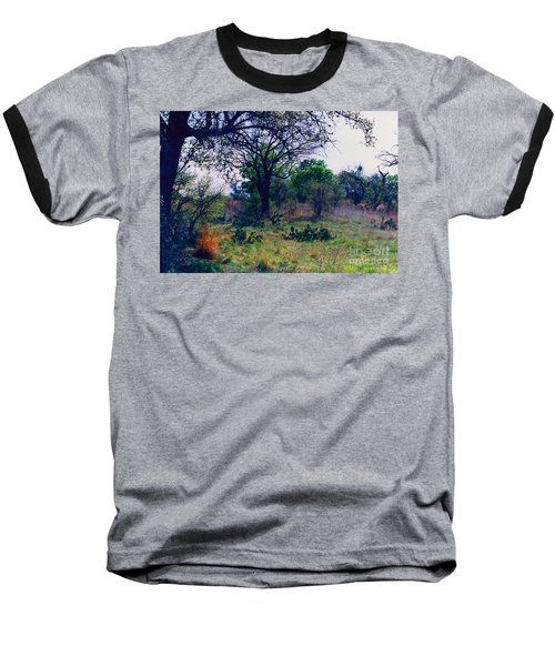 Texas Hill Country Baseball T-Shirt by Fred Jinkins