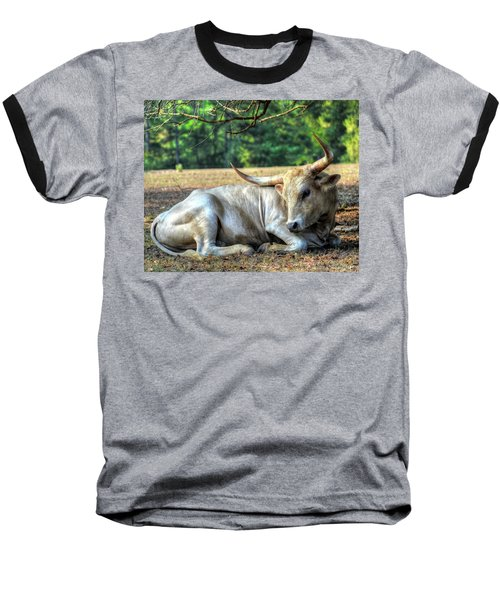 Texas Longhorn Gentle Giant Baseball T-Shirt