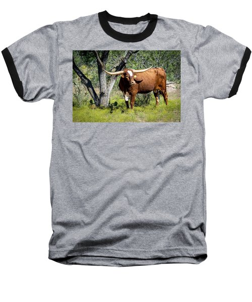 Baseball T-Shirt featuring the photograph Texas Longhorn Steer by David Morefield