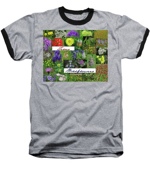 Texas Wildflower Collage Baseball T-Shirt