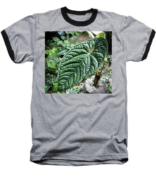 Texture Of A Leaf Baseball T-Shirt