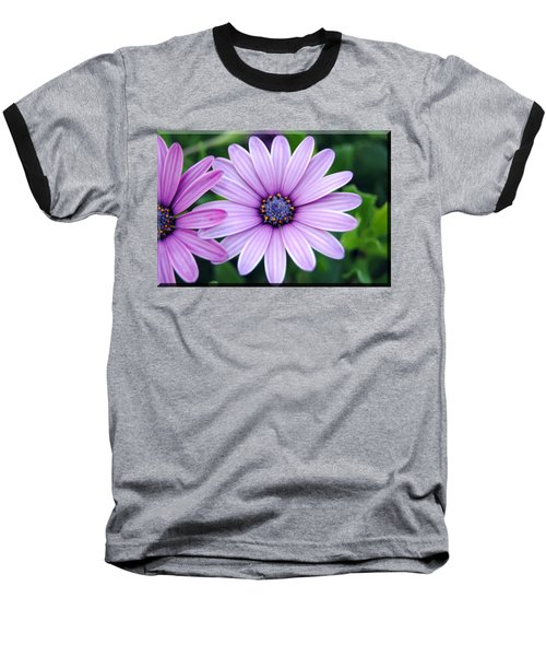 The African Daisy T-shirt 2 Baseball T-Shirt