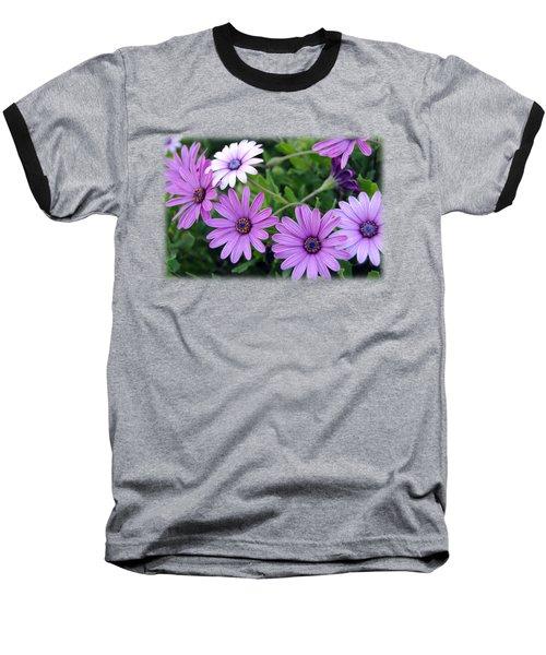 The African Daisy T-shirt 4 Baseball T-Shirt by Isam Awad