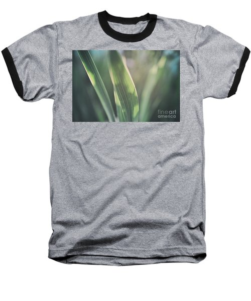 The Allotment Project - Sweetcorn Leaves Baseball T-Shirt