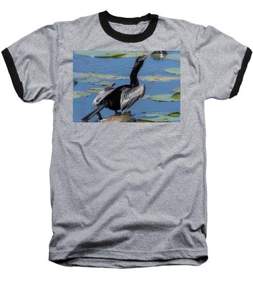 The Anhinga Baseball T-Shirt