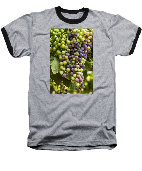 The Art Of Wine Grapes Baseball T-Shirt