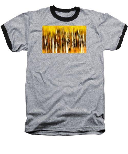 The Aspens Of Kenosha Pass Baseball T-Shirt