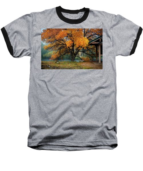 The Autumn Tree Baseball T-Shirt
