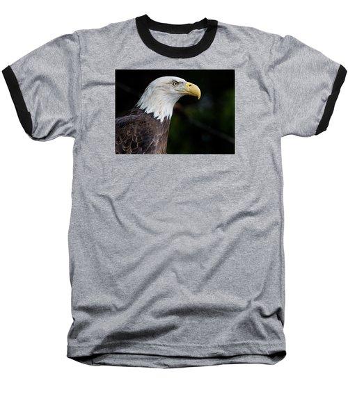 The Beak Pointeth Baseball T-Shirt by Greg Nyquist