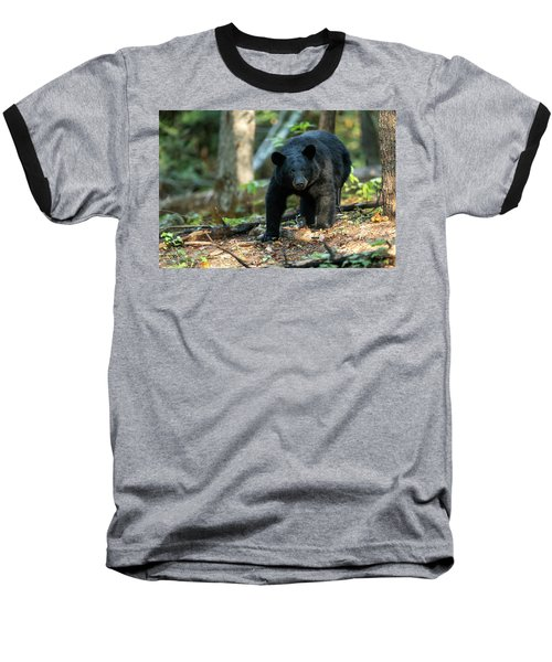Baseball T-Shirt featuring the photograph The Bear by Everet Regal