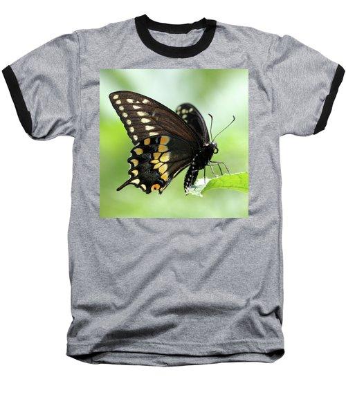 The Beautiful Black Swallowtail Baseball T-Shirt