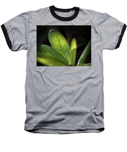 The Beauty Of A Leaf - Baseball T-Shirt