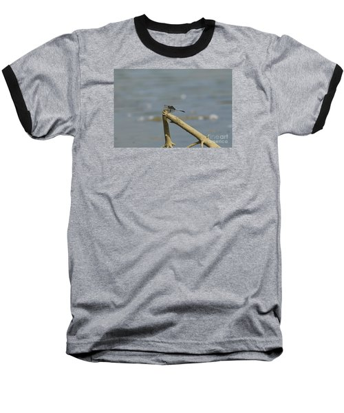 The Beauty Of An Dragonfly Baseball T-Shirt