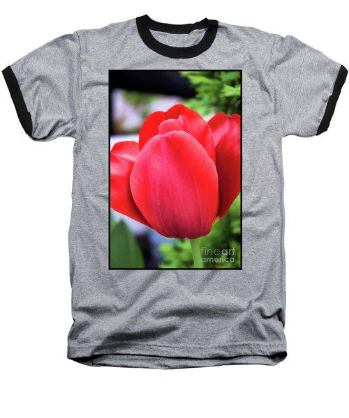 The Tulip Beauty Baseball T-Shirt