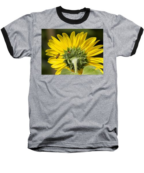 The Bee Lady Bug And Sunflower Baseball T-Shirt