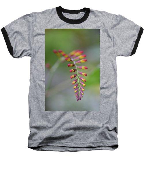 The Budding Arch Baseball T-Shirt by Janet Rockburn
