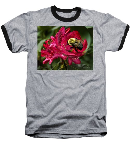 The Bumble Bee Baseball T-Shirt