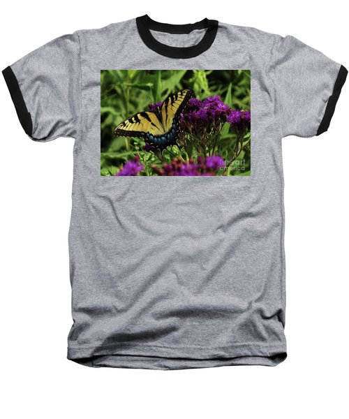 The Butterfly Buffet Baseball T-Shirt by J L Zarek