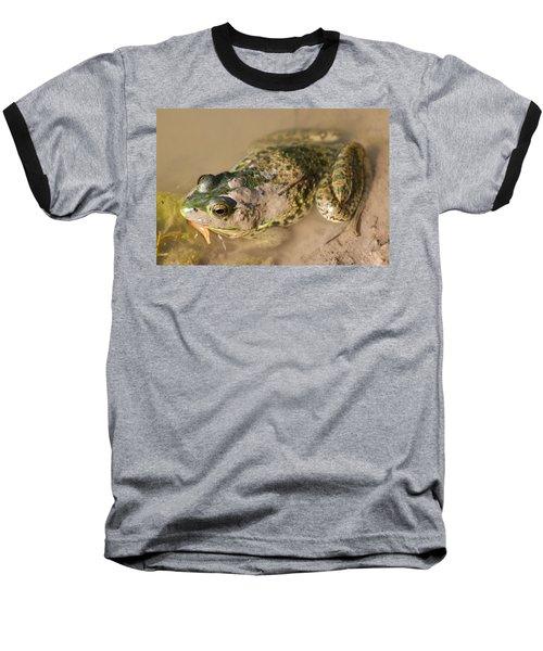 The Camouflage Frog Baseball T-Shirt by Lisa DiFruscio