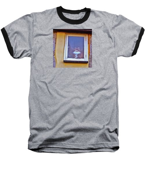 The Cat In The Window Baseball T-Shirt