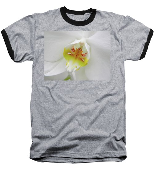 The Cat Side Of An Orchid Baseball T-Shirt by Manuela Constantin