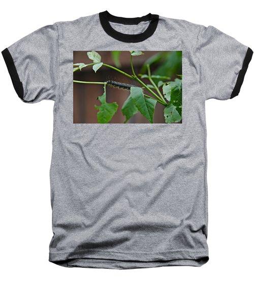 The Caterpillar 2 Baseball T-Shirt by Cendrine Marrouat