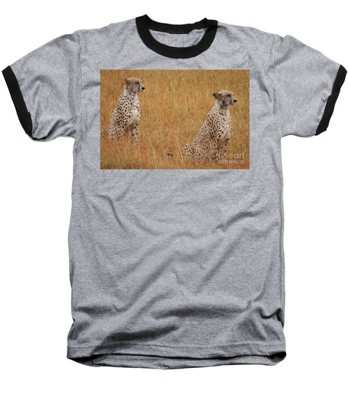 The Cheetahs Baseball T-Shirt by Nichola Denny