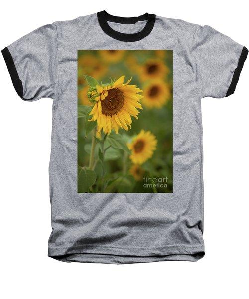 The Close Up Of Sunflowers Baseball T-Shirt