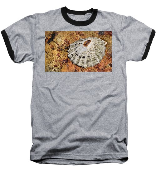 The Common Limpet Baseball T-Shirt