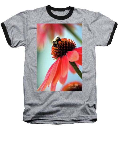 The Coneflower Collection 2 Baseball T-Shirt