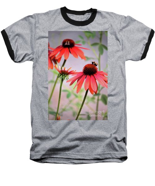 The Coneflower Collection Baseball T-Shirt