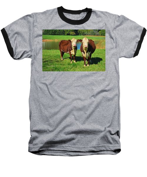 The Cow Girls Baseball T-Shirt by Sandi OReilly
