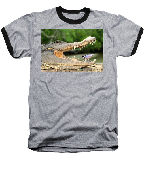 The Crocodile Bird Baseball T-Shirt