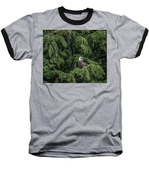 Baseball T-Shirt featuring the photograph The Dark Eyed One by Timothy Latta