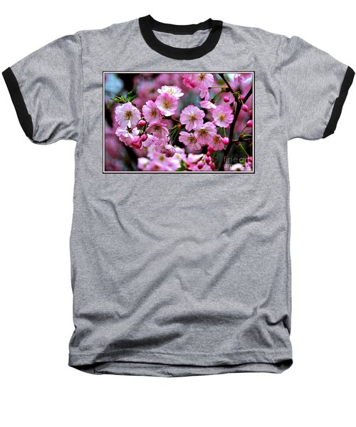 The Delicate Cherry Blossoms Baseball T-Shirt