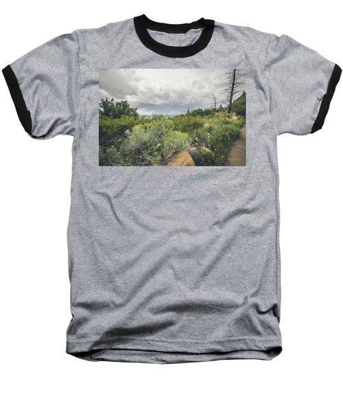 The Desert Comes Alive Baseball T-Shirt