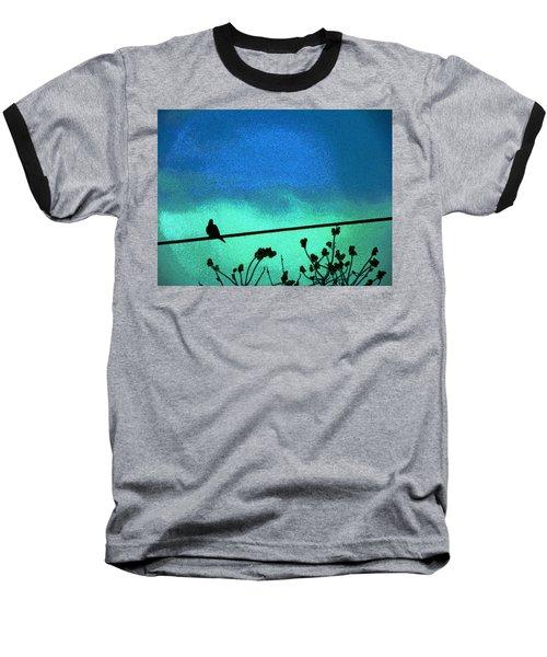 The Dove Above 2 Baseball T-Shirt