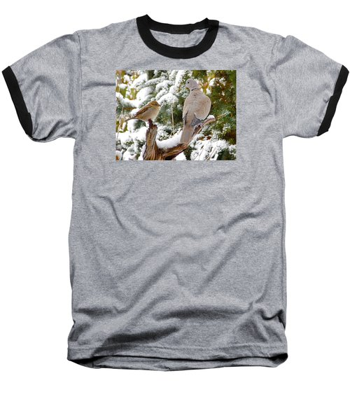 The Dove And The Swallow Baseball T-Shirt by Deborah Moen