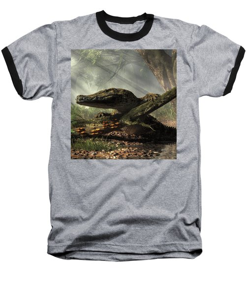 The Dragon Of Brno Baseball T-Shirt
