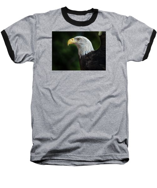 The Eagle Baseball T-Shirt by Greg Nyquist