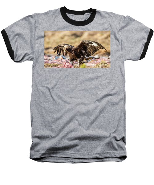The Eagle Have Come Down Baseball T-Shirt by Torbjorn Swenelius